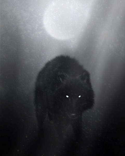 Иллюстрация. Источник: http://fc05.deviantart.com/fs48/f/2009/154/8/f/Wolf_of_winter_night_by_Dark_Sheyn.jpg